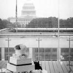 Washington, D.C. Wedding Celebration